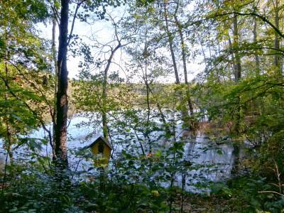 Friedewald - am Naturschutzgebiet Neuteich