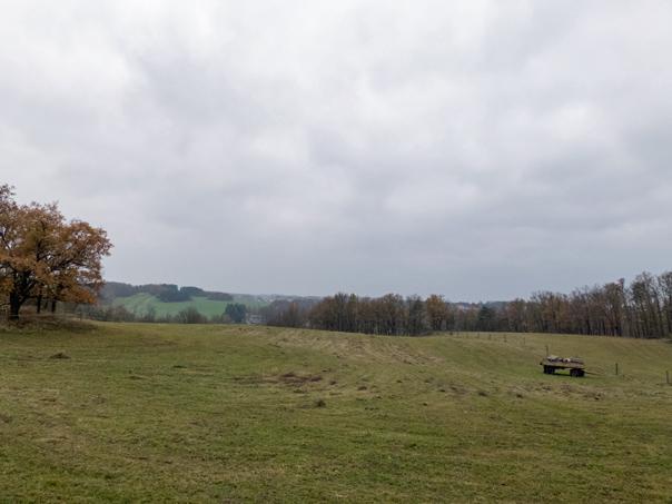 Landschaft an der Wachbergstraße
