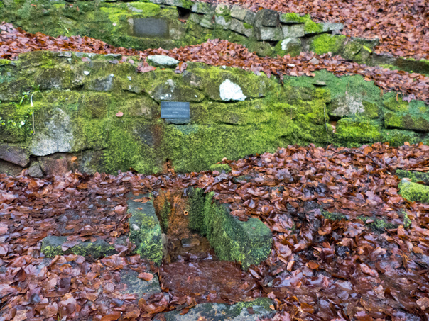 Melzer-Quelle am Beginn der Treppe zu Ludens Ruh