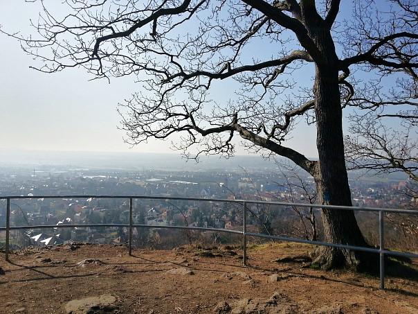 Blick von der Albrechtshöhe über Radebeul - leider etwas dunstig