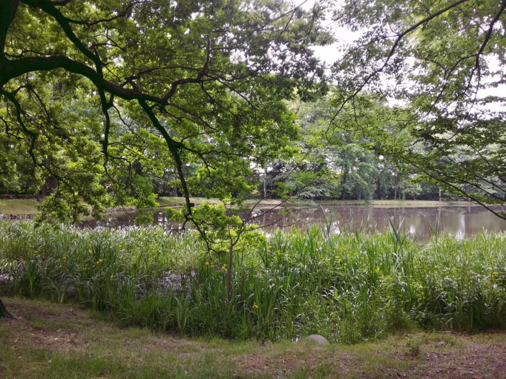 Naturpark Naunhof - Parkansicht