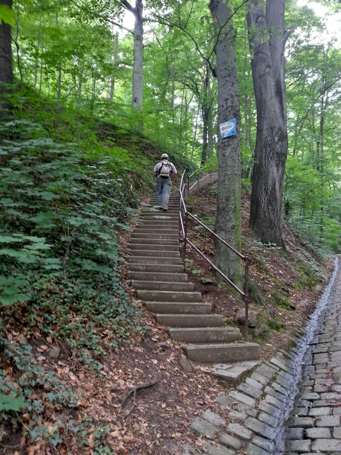 Beginn der Treppe im Rieselgrund