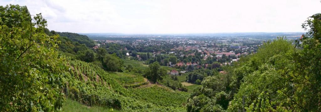 Blick vom Abzweig des Eggerwegs am Spitzhaus