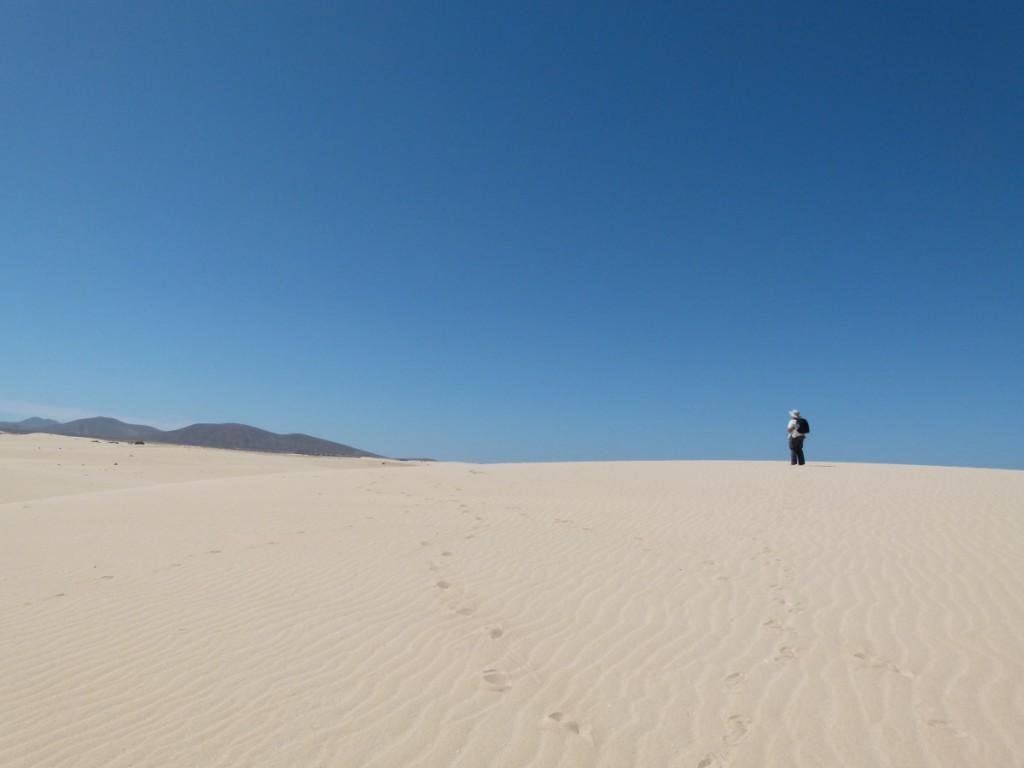 in den Dünen von Corralejo