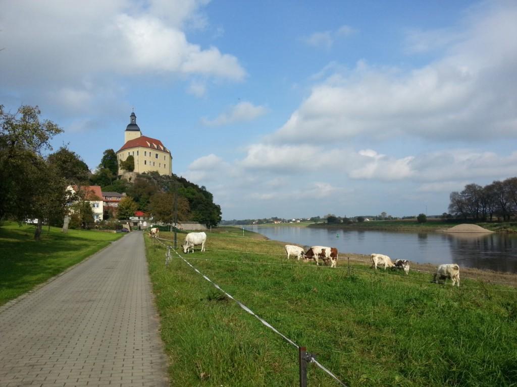 Schloss Hirschstein in Sicht