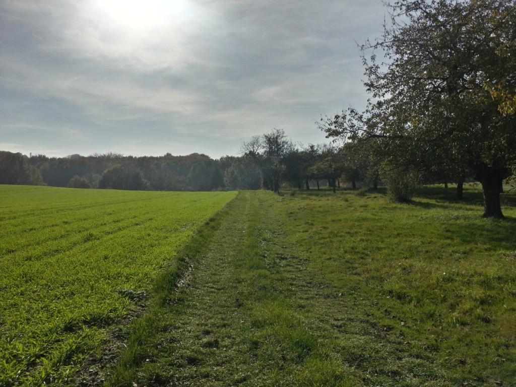 Landschaft bei Wahnsdorf