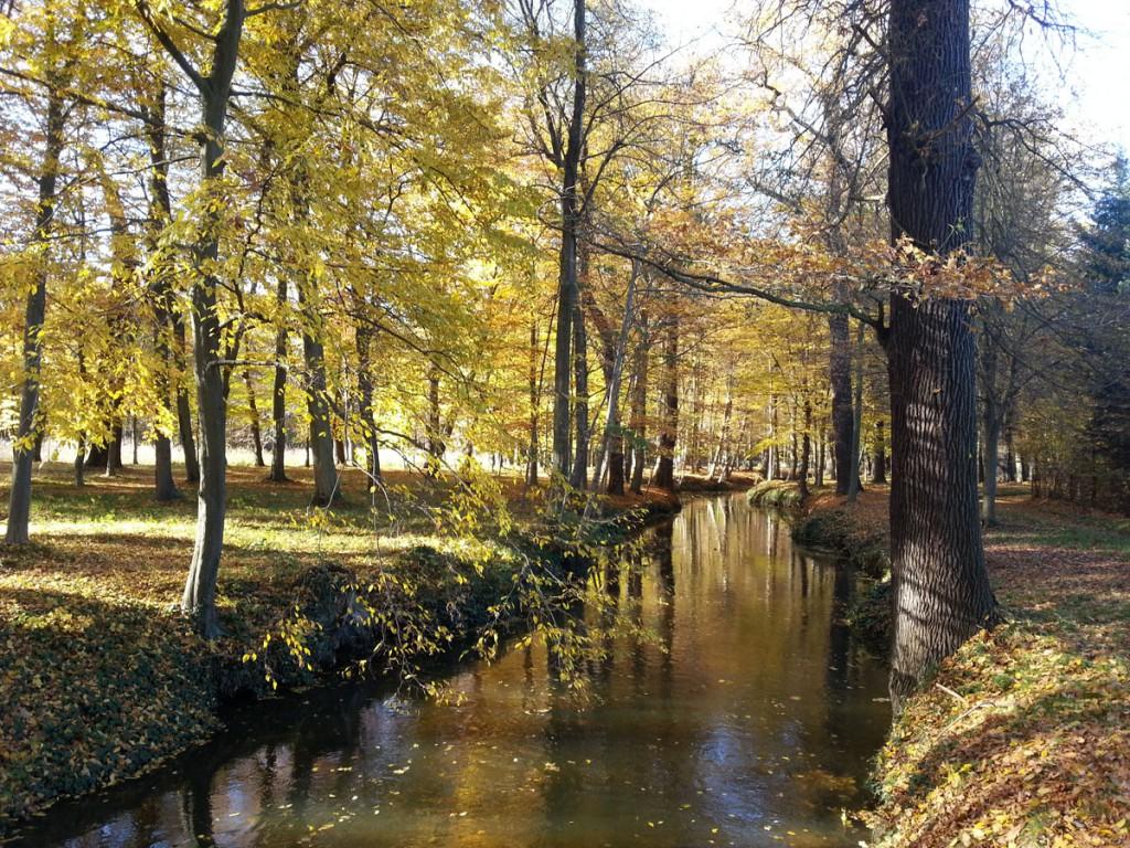 An der Großen Röder im Barockgarten Zabeltitz