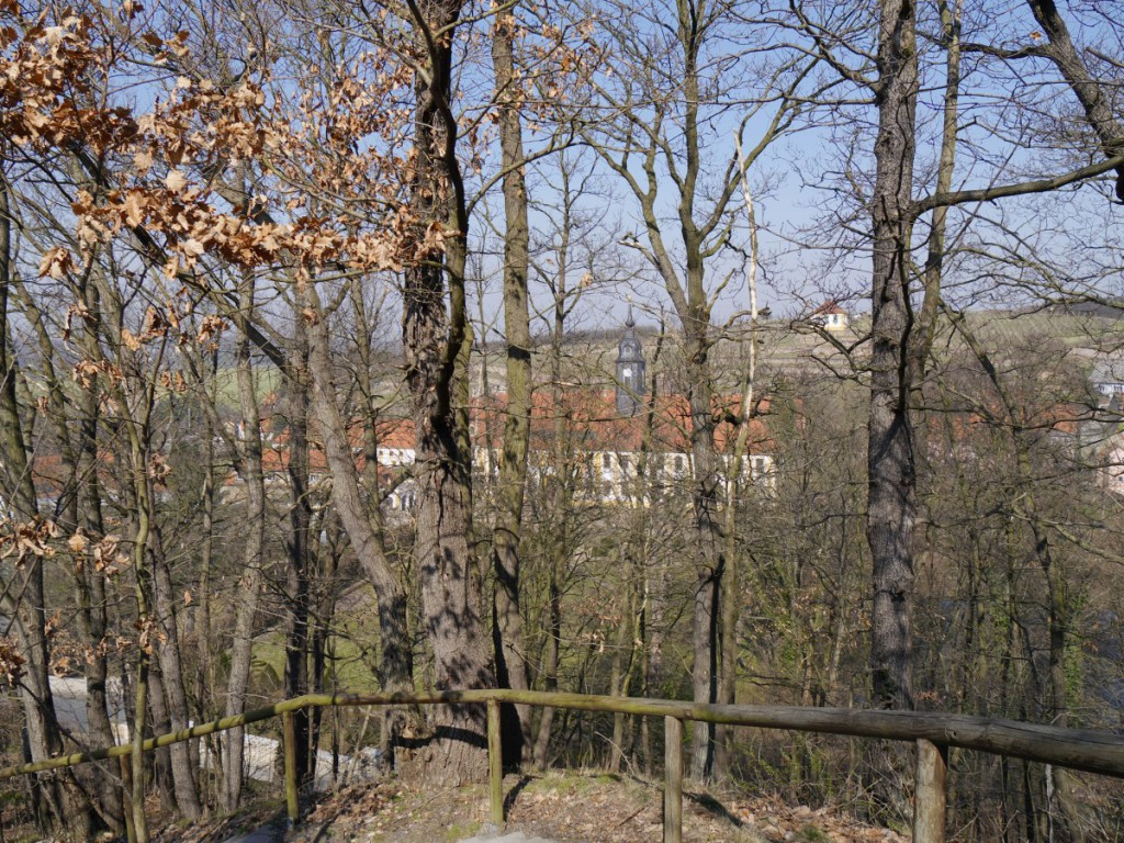 Ein Durchblick zum Schloss Seußlitz