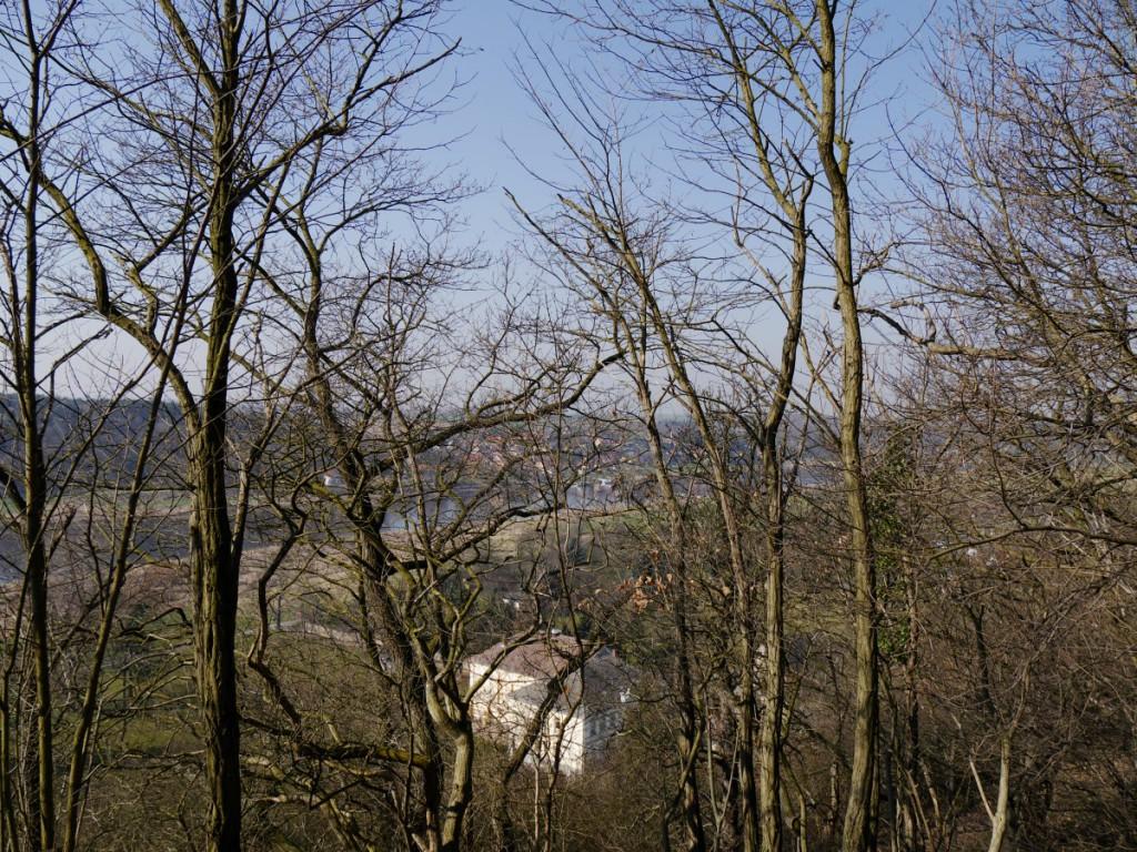 Durchblick zur Elbe von der Heinrichsburg