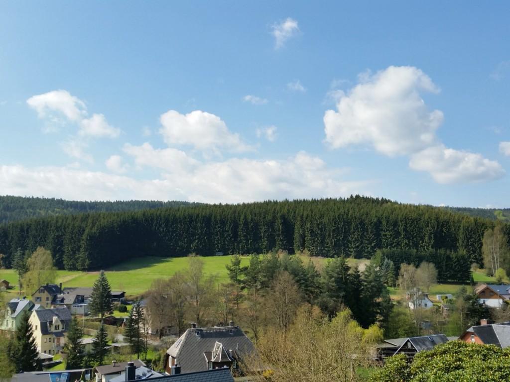 Blick von der Waldsiedlung