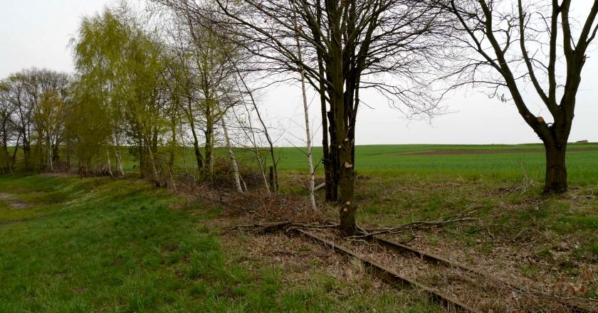 Radeburg - Bahnschienen