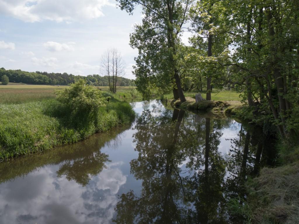 Am Ufer der Großen Röder in Medingen