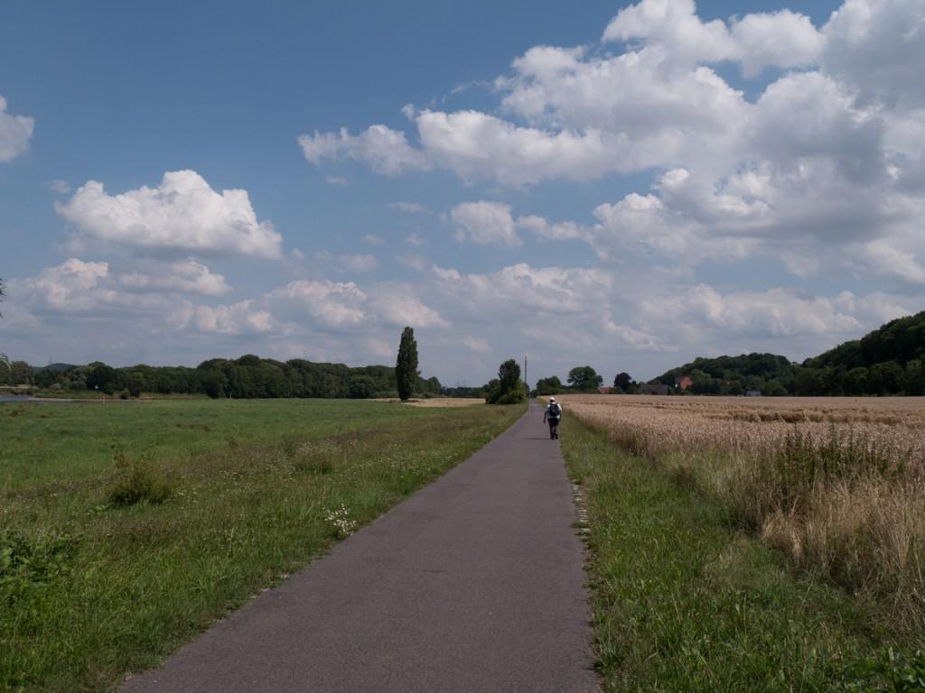 Auf dem Elberadweg vor Gauernitz
