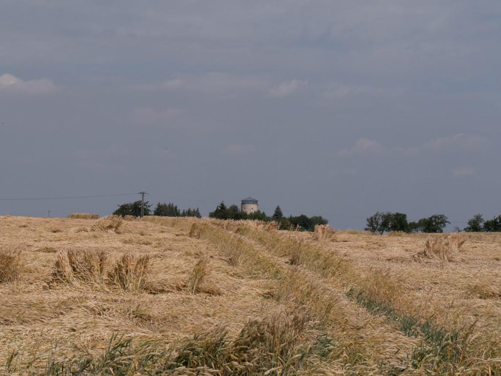 Blick zur Turmwindmühle in Pegenau