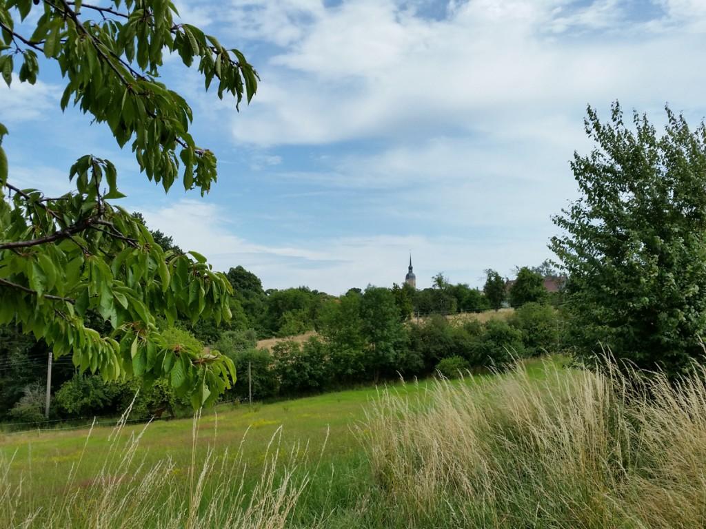 Blick zurück zur Kirche in Weistropp