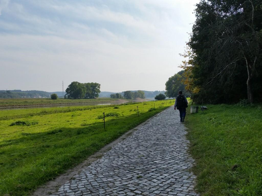 Auf dem Elberadweg