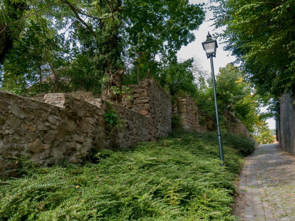 """""""Aufstieg"""" zum Schloss Hirschstein"""