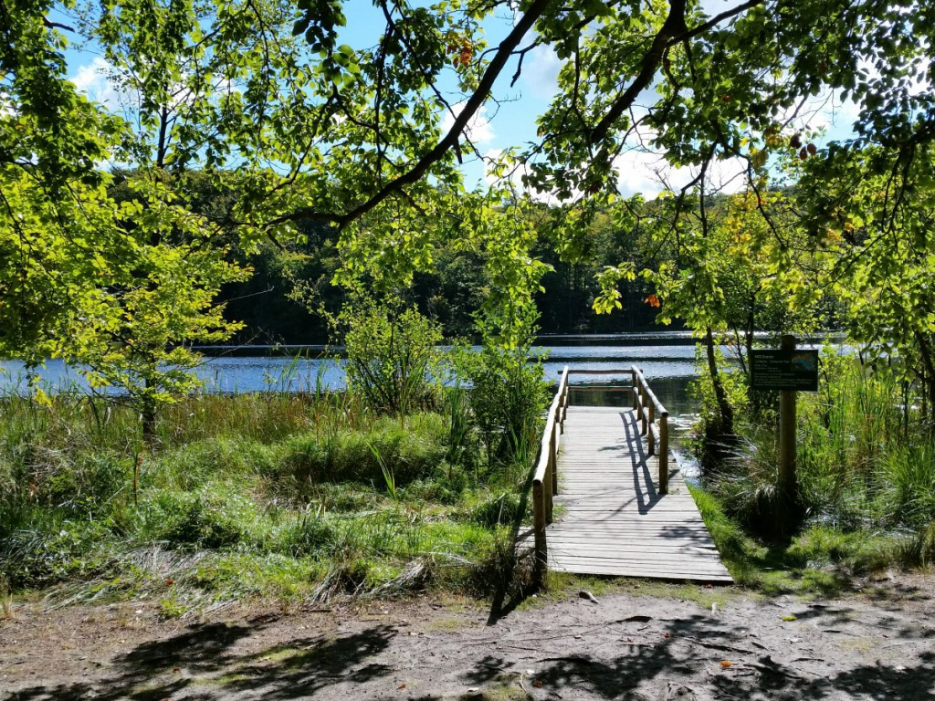 Am Schwarzen See in der Granitz