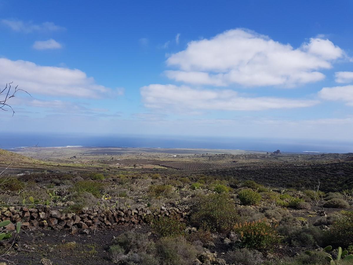 Abschließender Blick über das Malpaís de la Corona