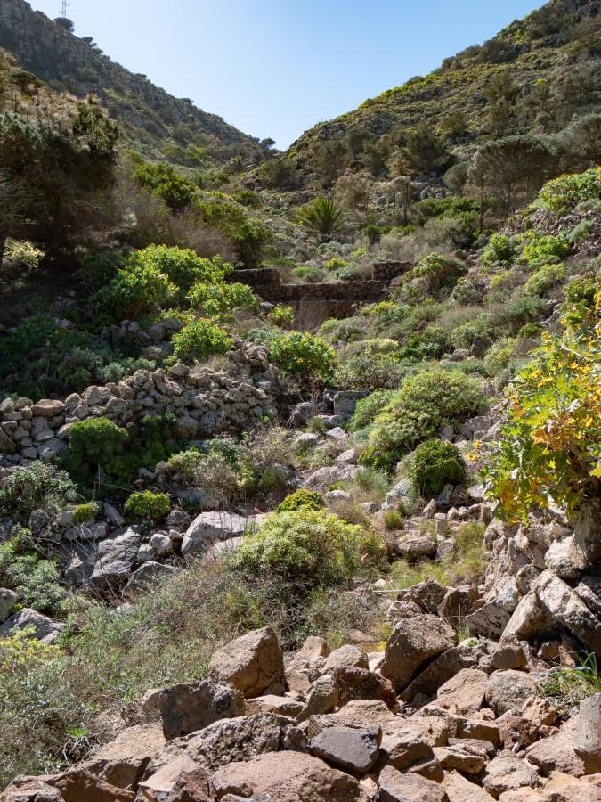 Staustufen im Barranco de Elvira Sánchez
