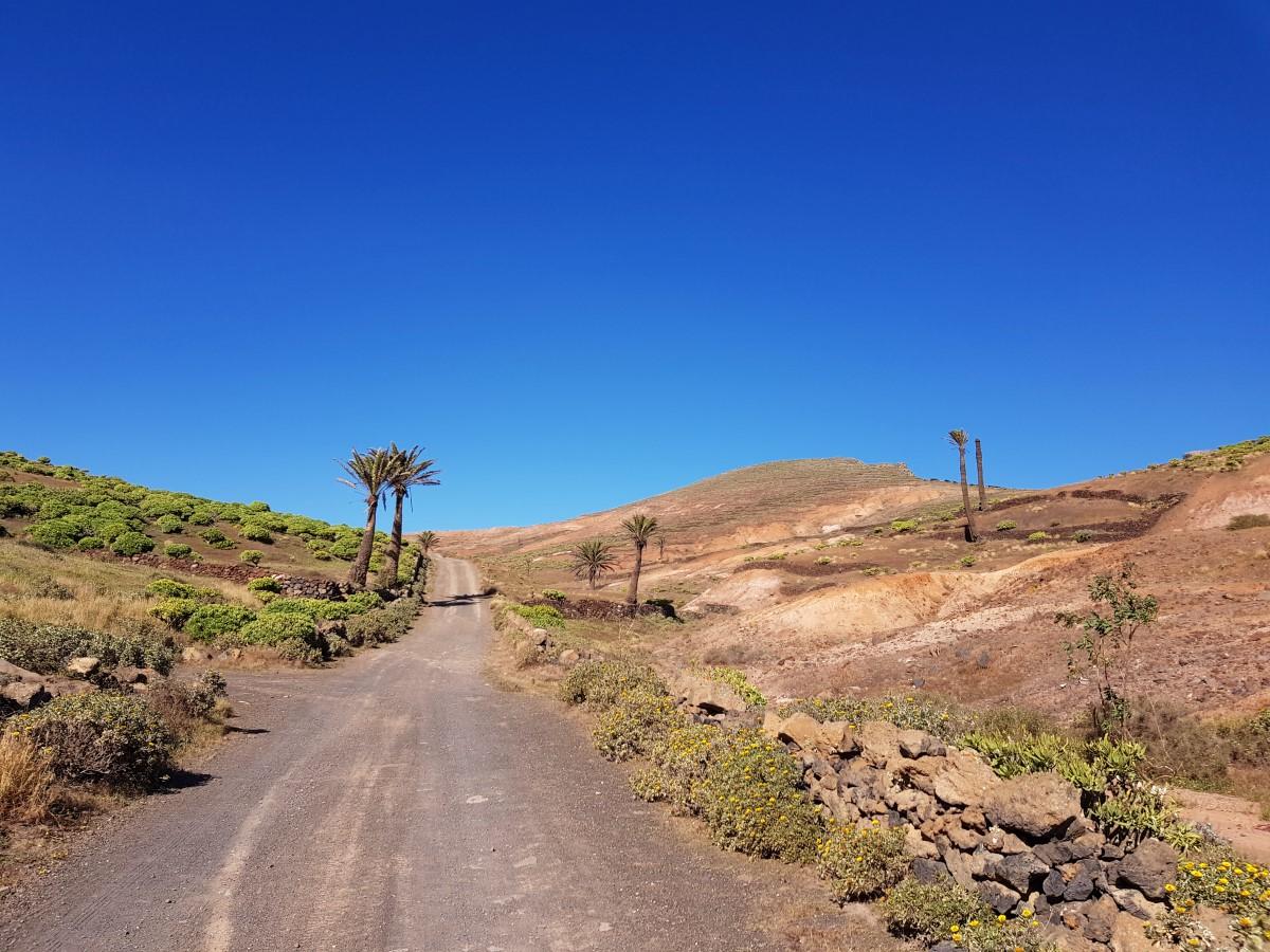 Auf breitem Weg durch das Valle del Rincón hinauf zum Famara-Kliff