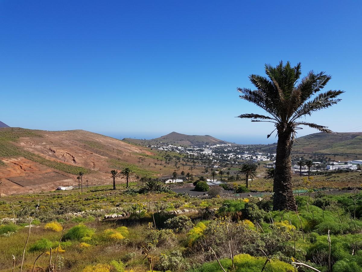 Blick auf Haría vom Fuß der Montaña Ganada