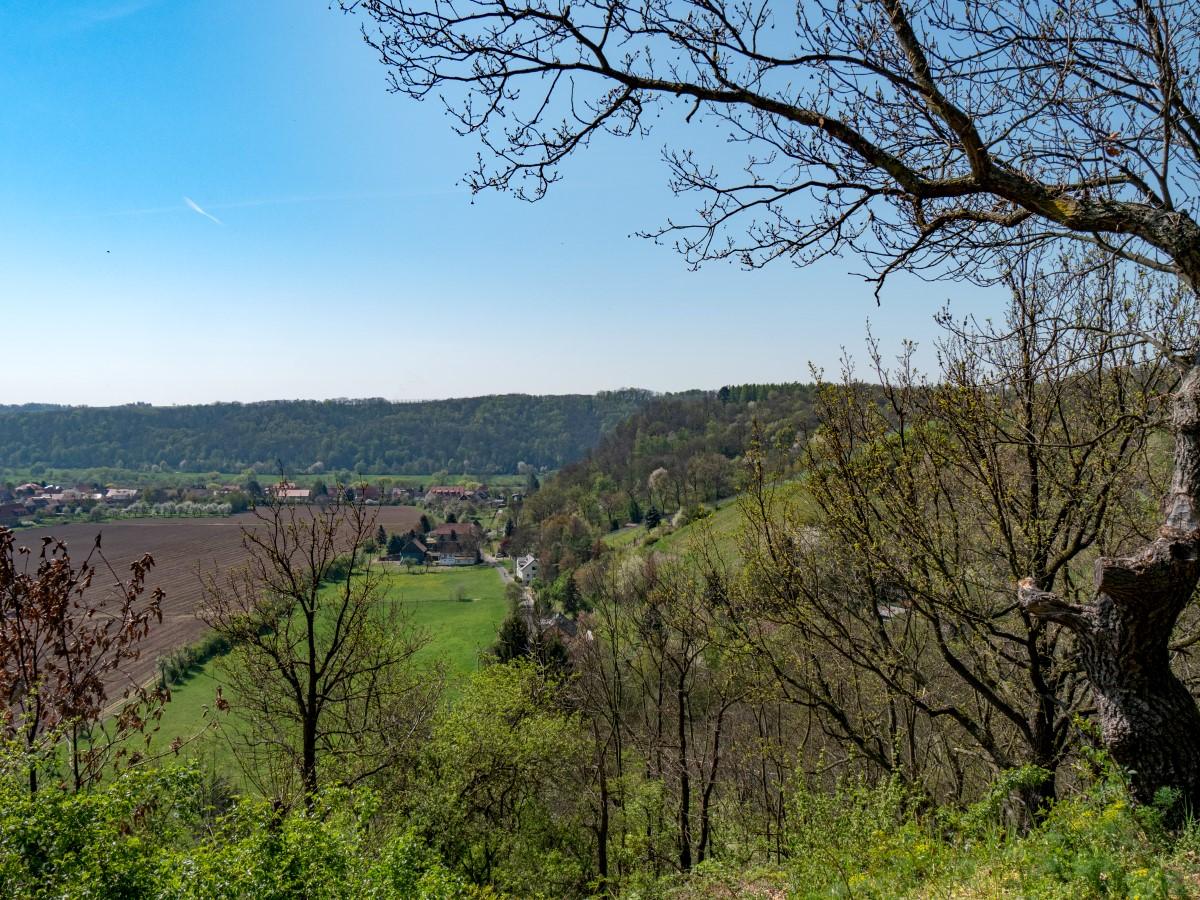 Blick über Sörnewitz zu den linkselbischen Elbhängen