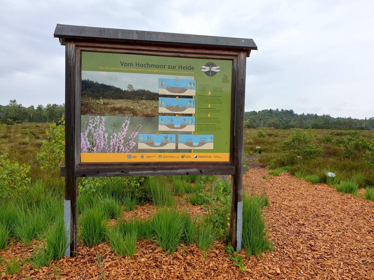 Eine der zahlreichen Infotafeln - Vom Hochmoor zur Heide