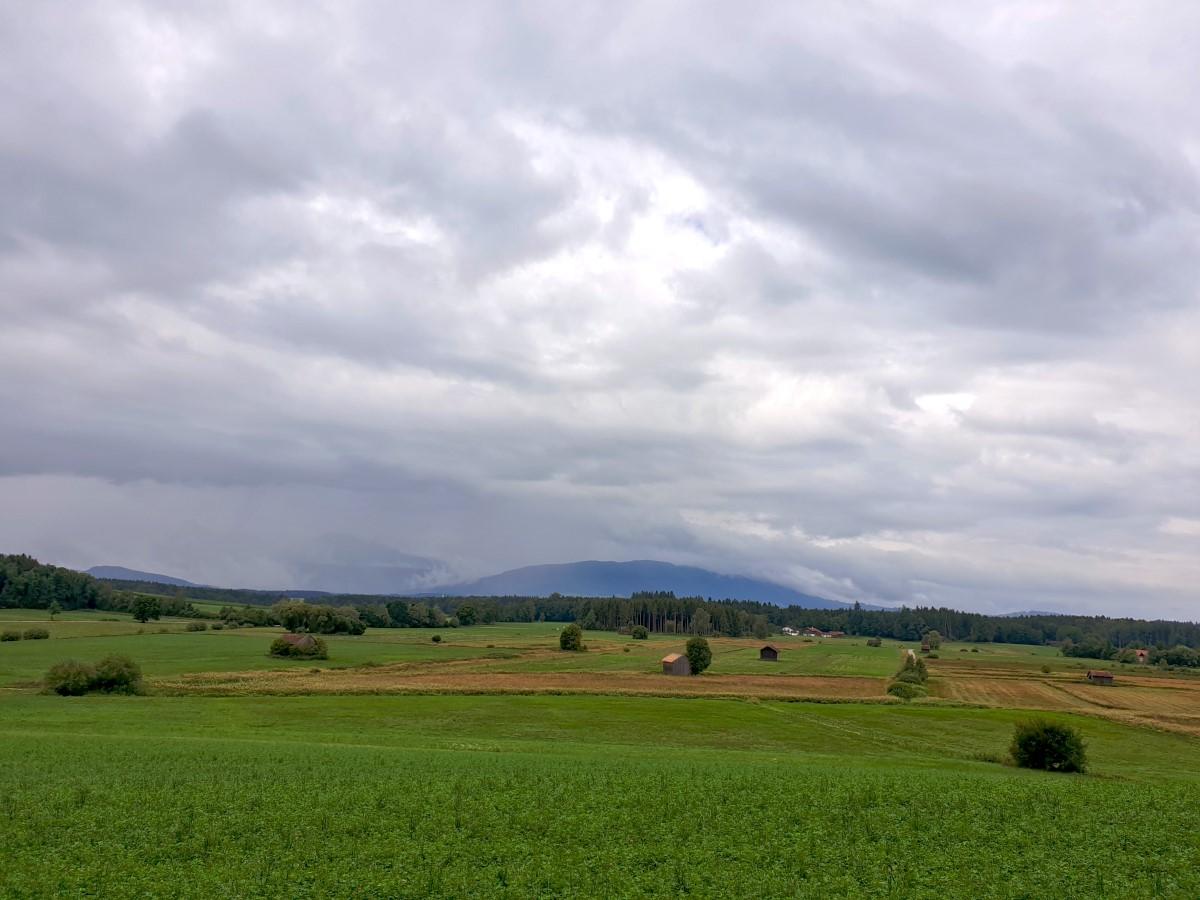 Blick über das Haarmoos zu den regenverhangenen Bergen