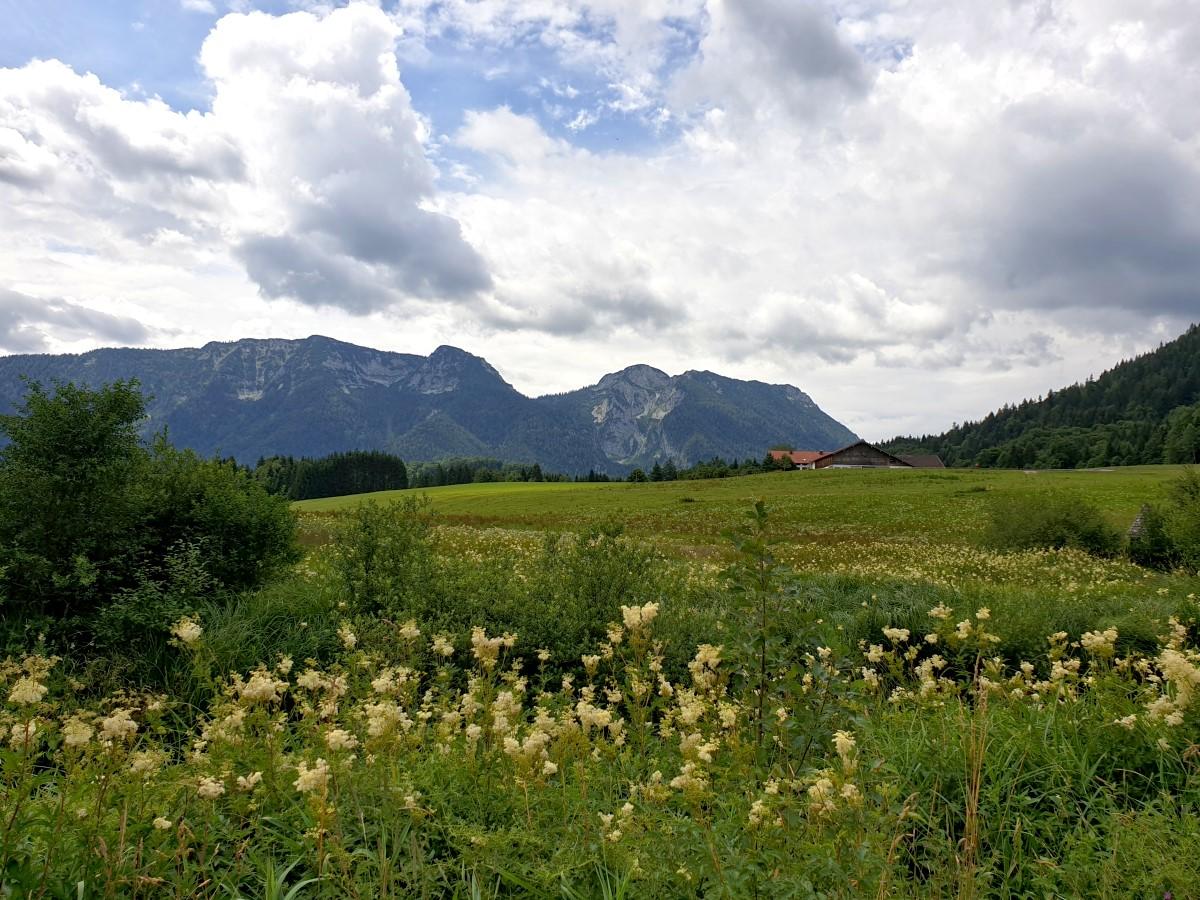Blick zum Großen Kienberg und Rauschberg