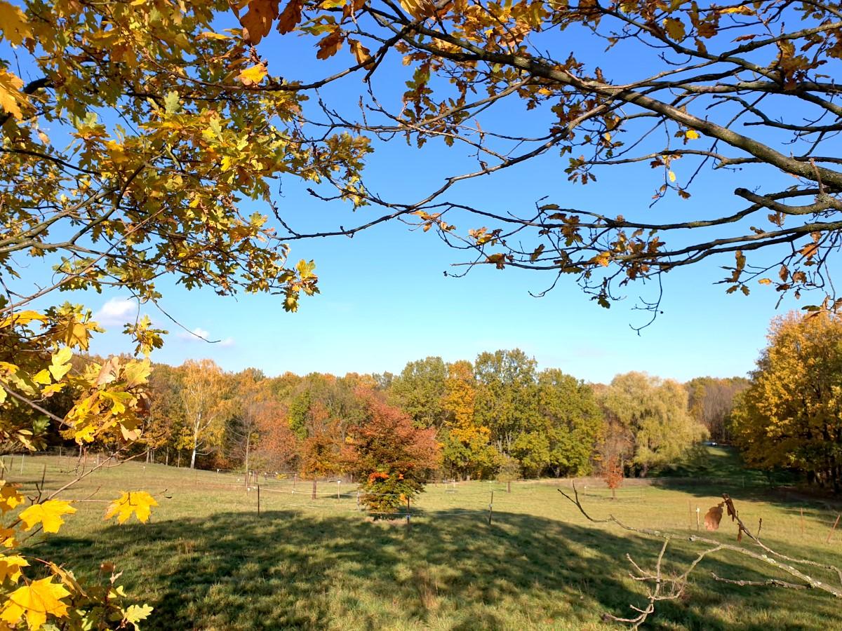 Herbstliche Landschaft Am Zechstein