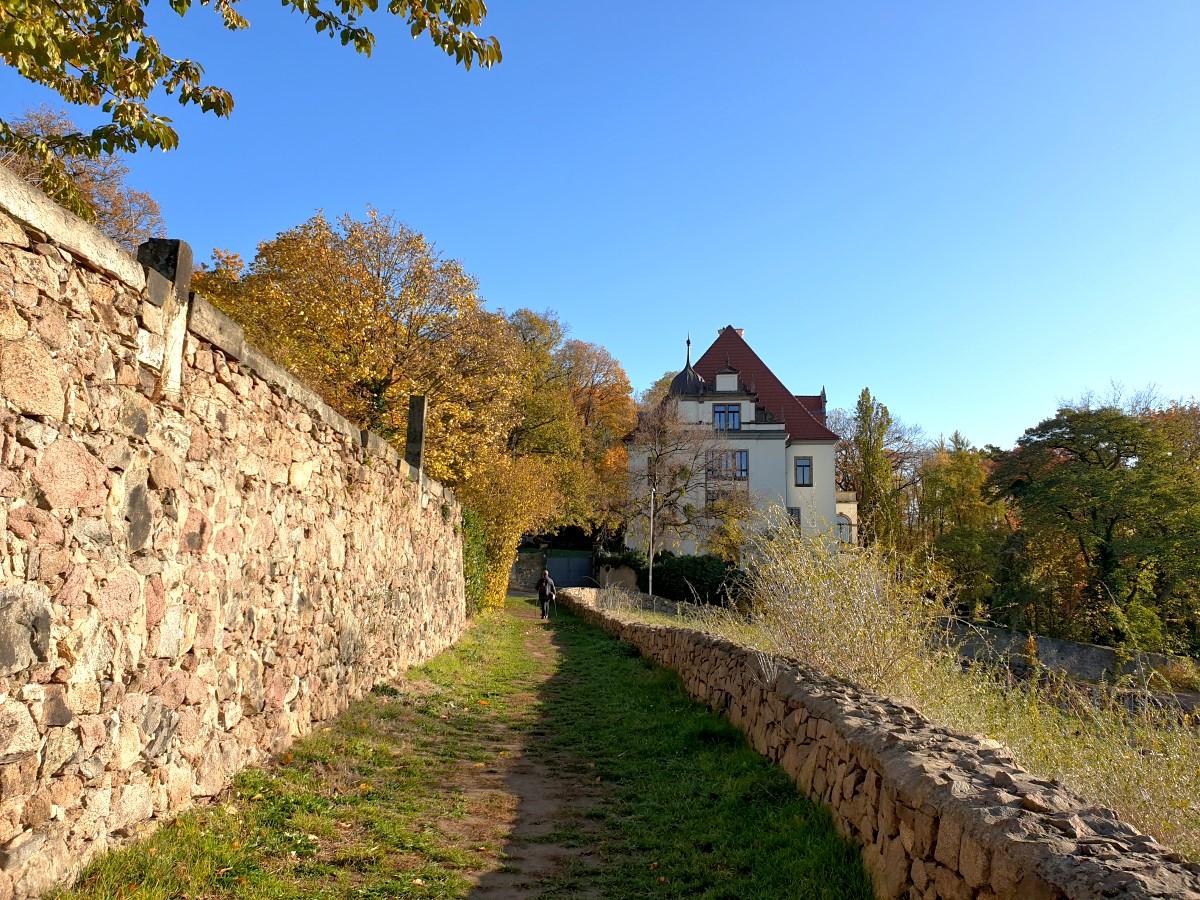 Auf dem Zechsteinweg kurz vor der Weinanlage Hohenhaus