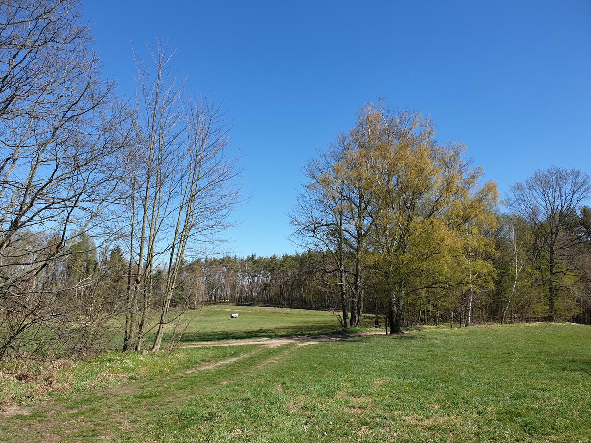Landschaft am Schlossweg