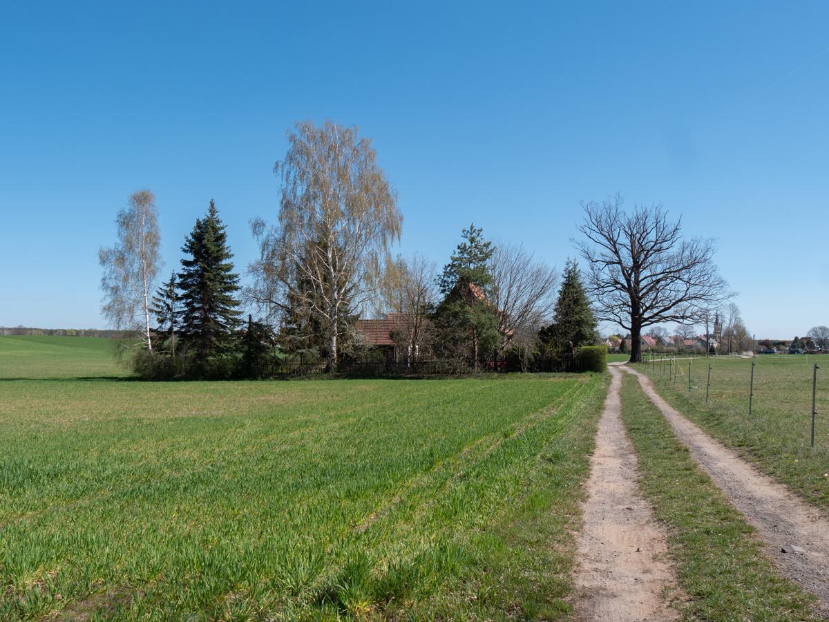 Kurz vor Bärwalde mit Blick zur Kirche