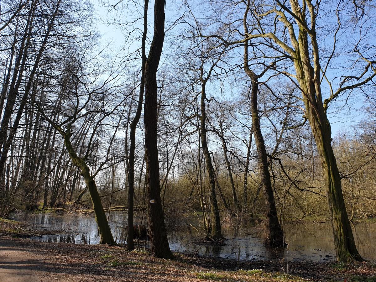 Landschaft am Röderwanderweg