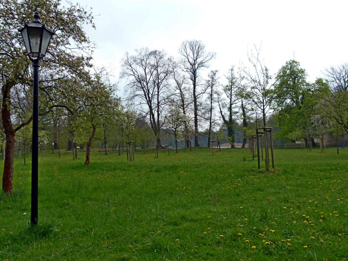 im Schlosspark Hermsdorf