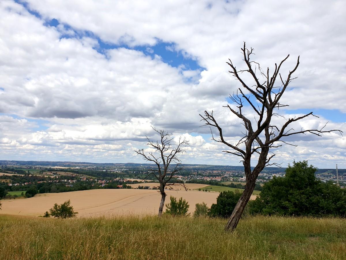 Aussichtspunkt am Gohlberg