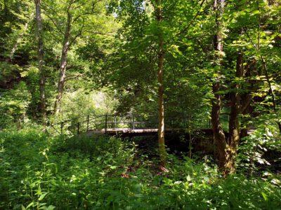 Röderbrücke an der Kunathsmühle