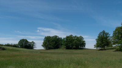 Landschaft am Graben