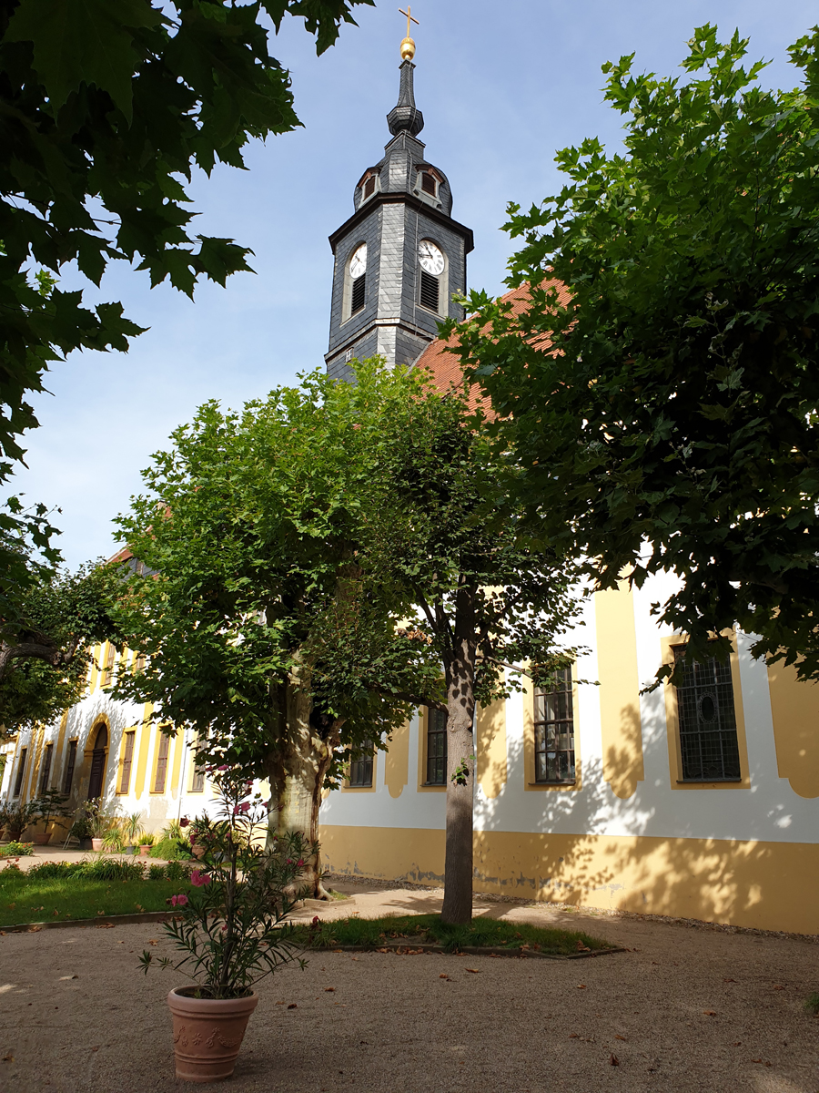 Am Schloss Seußlitz