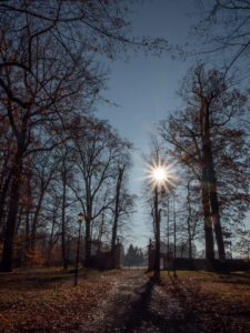 Ausgang am Schlosspark