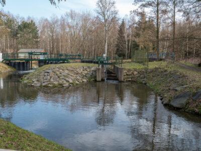 Großes Gabelwehr, Fischtreppe