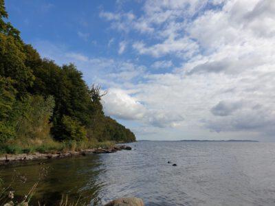 Ufer an der Goor
