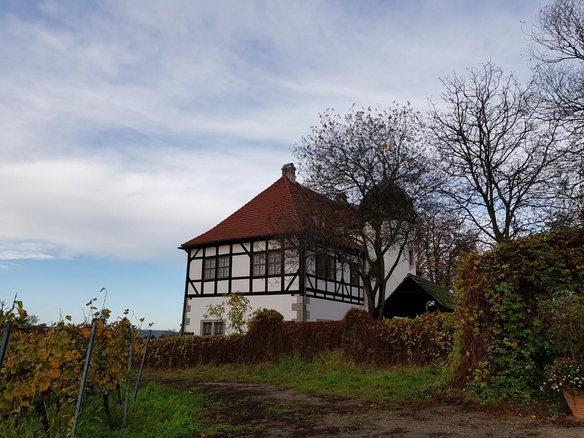 Blick vom Knohllweg zum Berg- und Lusthaus Hoflößnitz