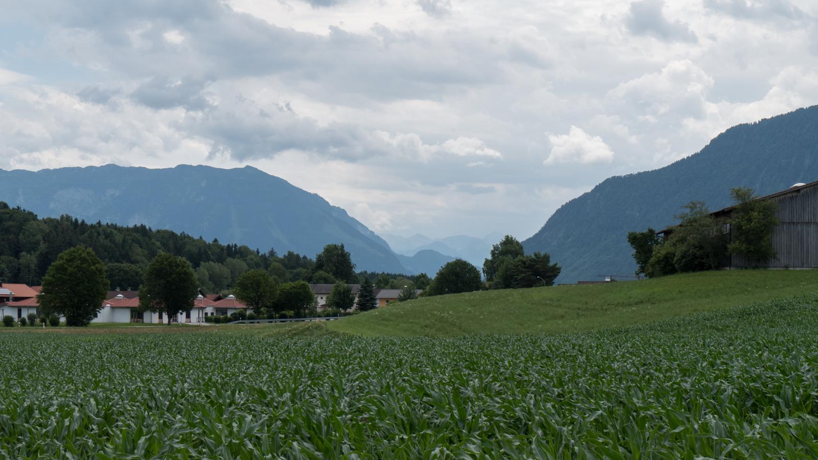 Auf dem Weg bei Hainham - Durchblick zwischen Untersberg und Lattengebirge