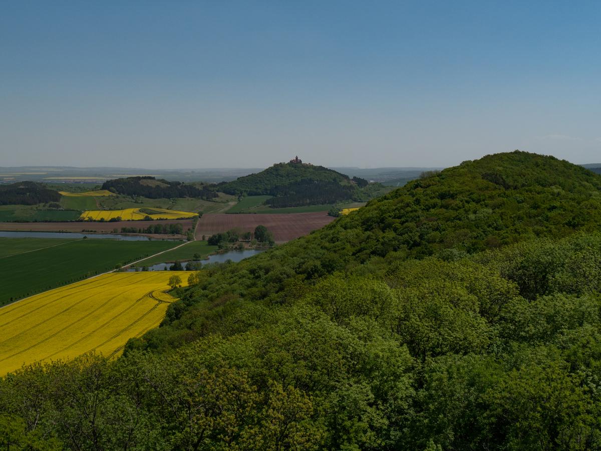 Blick vom Turm der Mühlburg über die Schlossleite zur Wachsenburg, links die Torfstiche