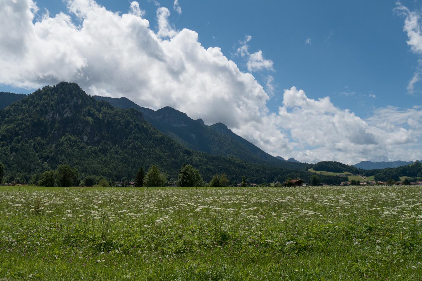 Blick auf die Inzell umgebenden Berge