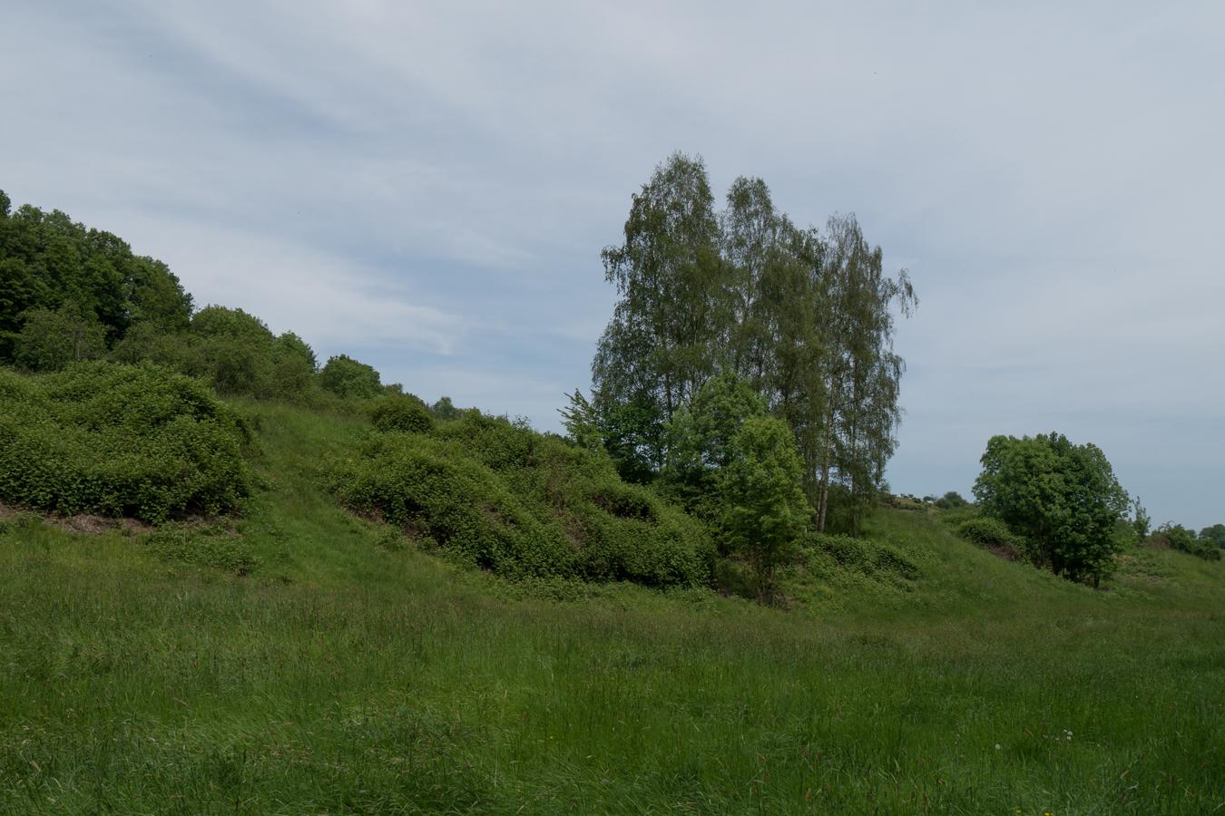Im Regenbachtal