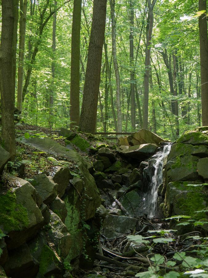Ein kleiner Wasserfall...