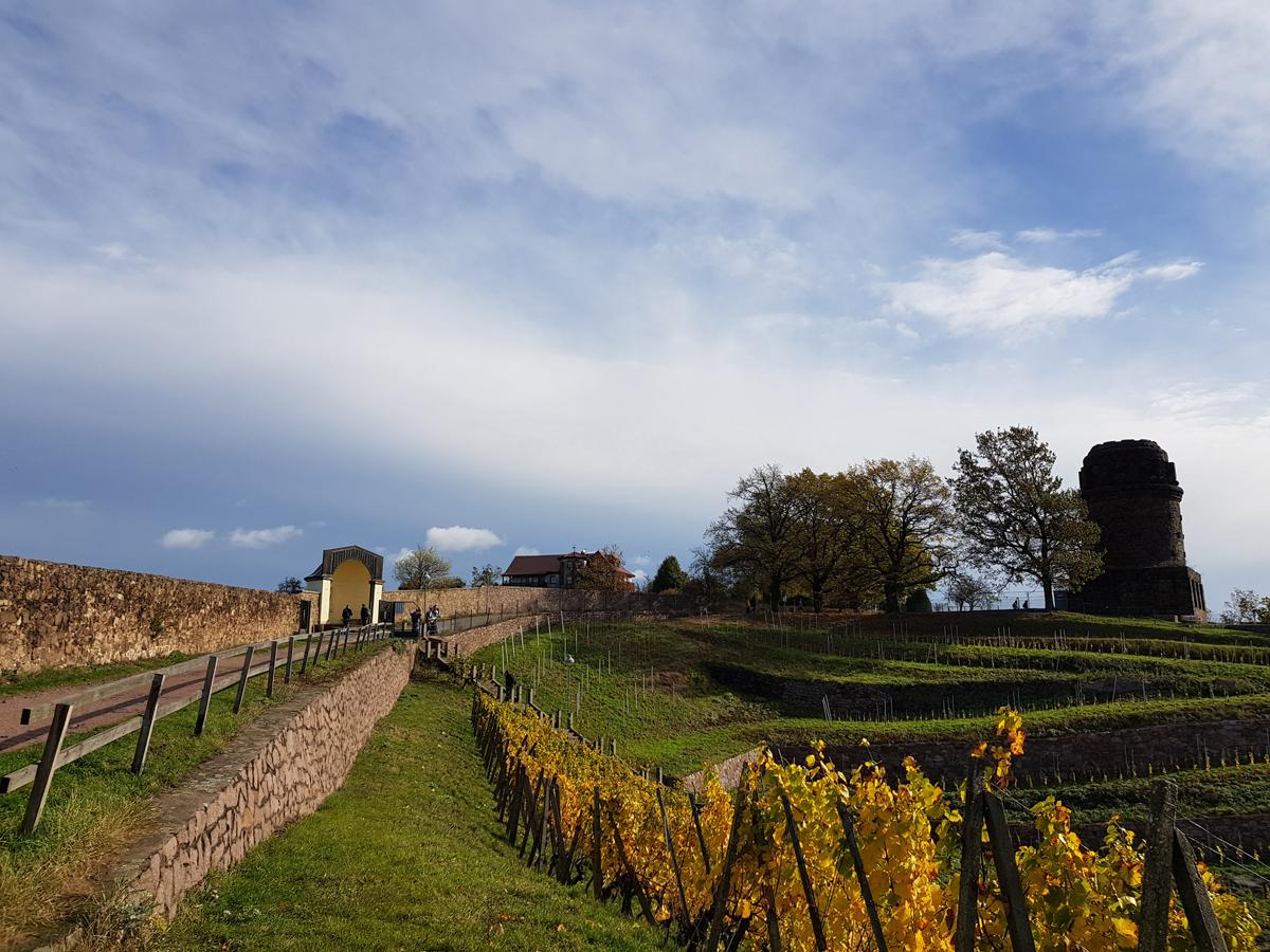 Blick zum Muschelpavillon und Bismarckturm